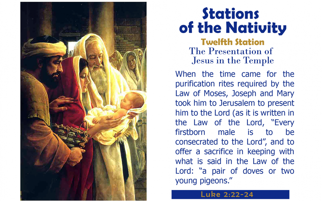 Twelfth Station: Presentation at the Temple